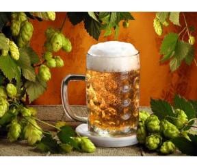 Неужели диета на пиве поможет сбросить вес?!