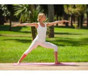 Секрет философского учения - Йога