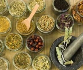 Самые-самые травы которые помогут похудеть