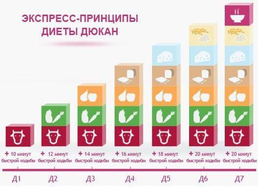 экспресс принципы диеты пьера дюкана