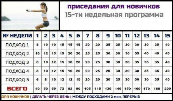 таблица для новичков