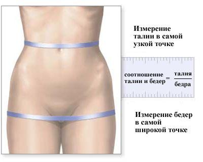 измерить талию и бедра