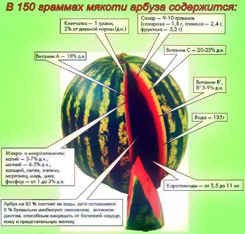 из чего состоит арбуз